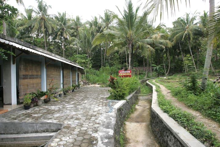 Cemoro Jajjar - Yogyakarta