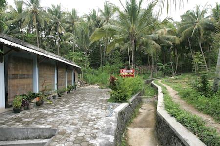 Cemmoro Jajar - Yogyakarta