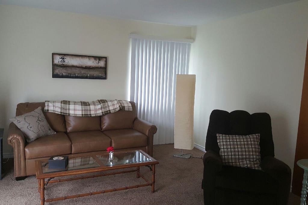 Living Room w/pull out queen sofa