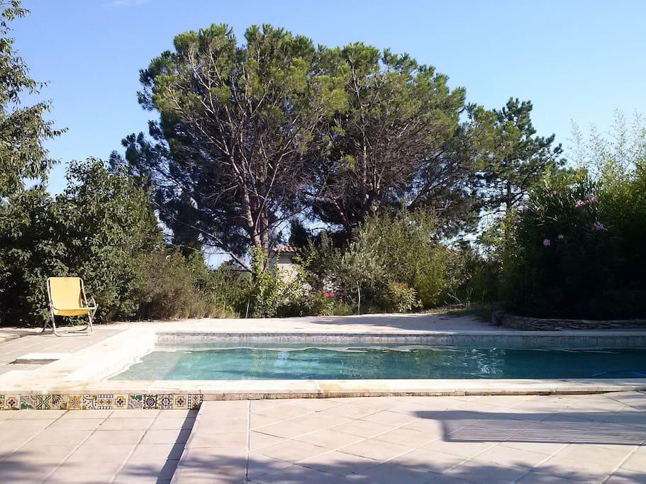 La piscine carrelée dimensions 8 X 4 mètres