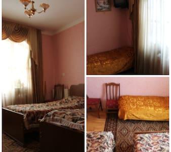 guesthouse  kavkasioni-33 - Telavi