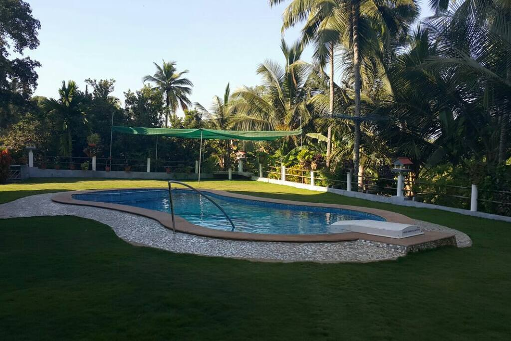 Guests can use the pool