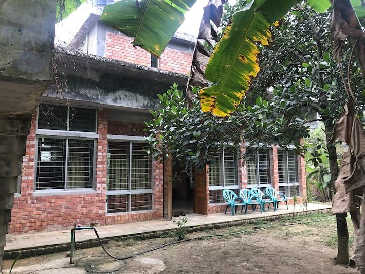 Mirabad Junglebari