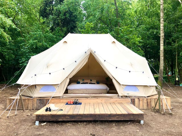 Cowcooning Glamping