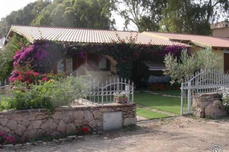 S.TEODORO - VILLA QUADRILOCALE - San Teodoro - Villa