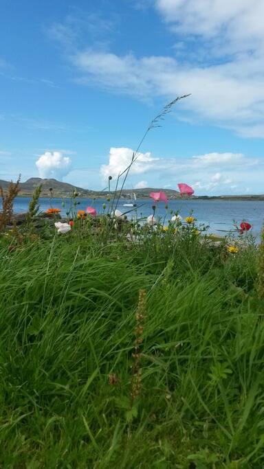 Trawenagh Bay in summer.