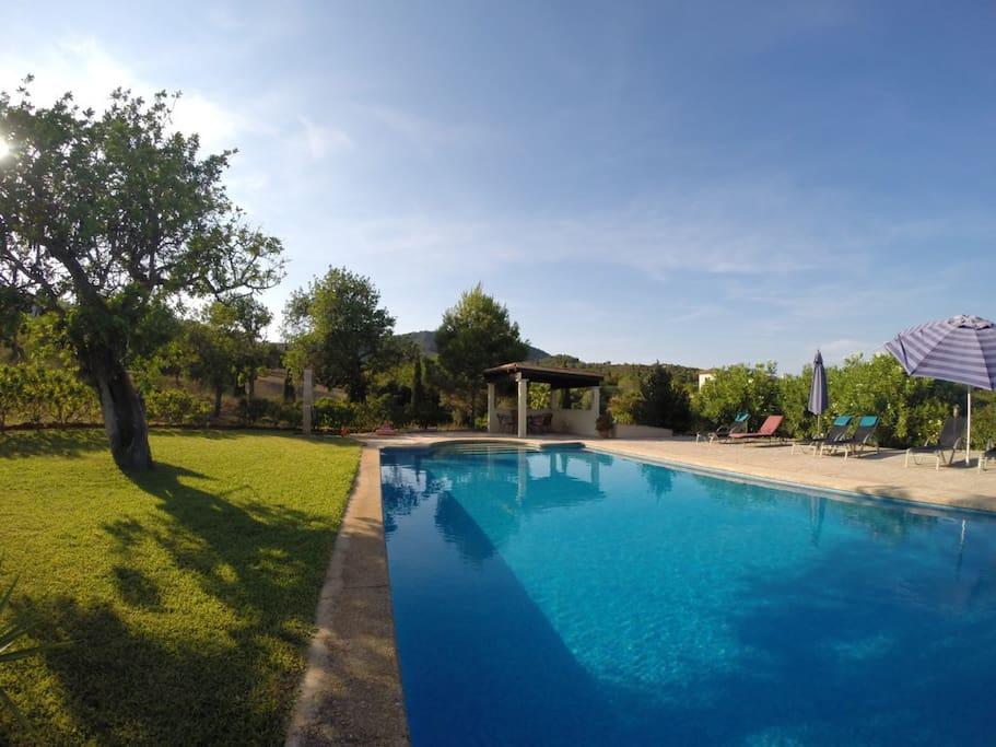 15m Pool and Cabana