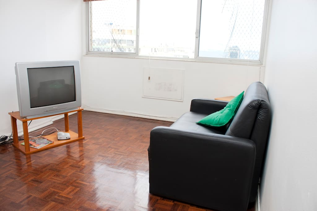 TV 29, Internet Wi-FI, Sofa bed, dining table, ocean view