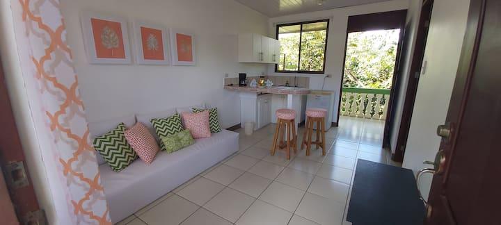 Coral Unit Apartamento a 10 minutos de Tamarindo