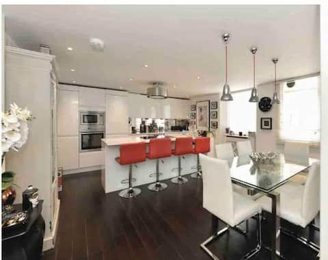 Gorgeous apartment, central London