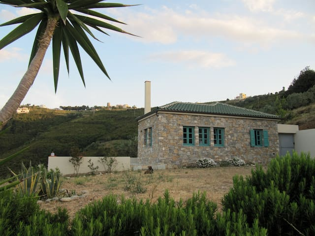 Gorgeous House Exclusive Location - Alónnisos