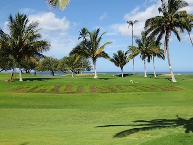 Newly Renovated Beautiful Oceanfront Complex Maui!