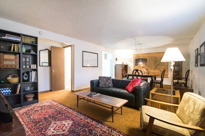 Spacious 1-bedroom private basement apartment