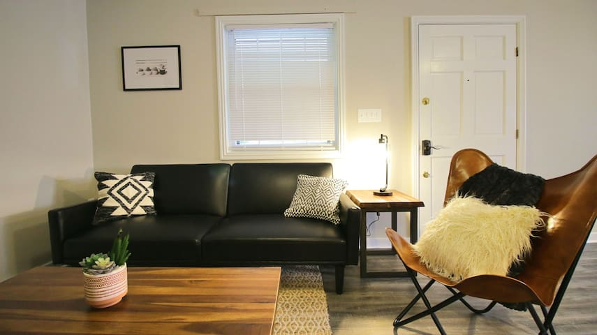 Mixed Modern 1 Bedroom Apt in Downtown Lexington!