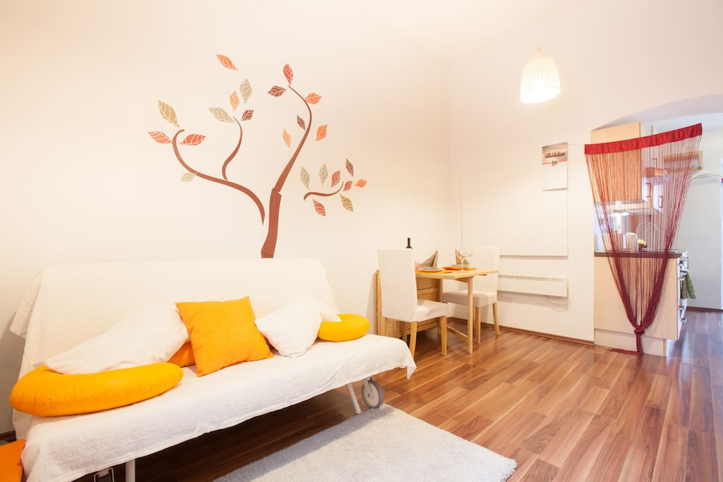 Living & dinning area (couch- sleeping area for two people, dinning table for up to 4 people)