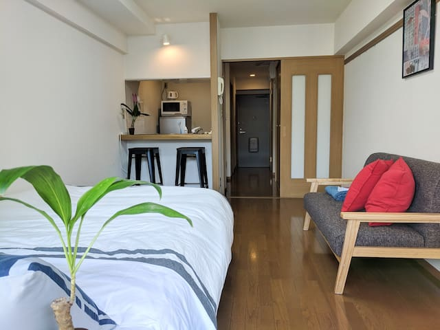 Newly remodeled Flat in the Heart of Shimokita 2