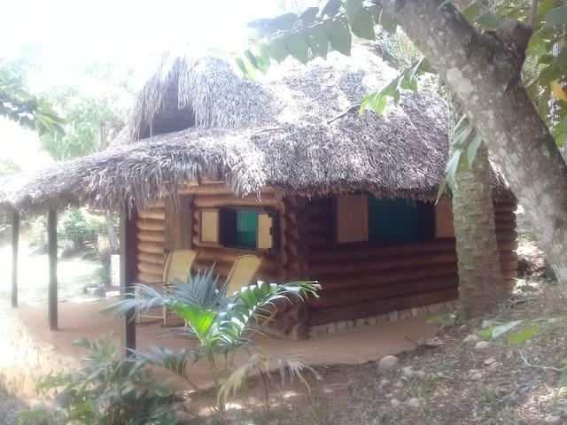 cabañas sierraverde huasteca potosina'PALO DE ROSA