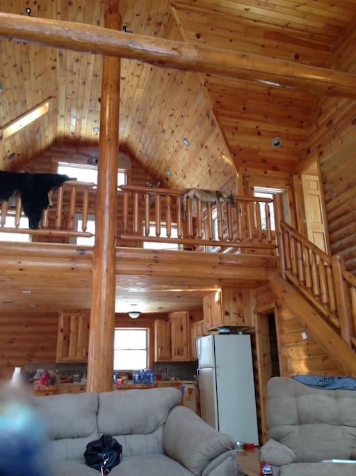 View from one couch looking at the main cabin area, full kitchen, and loft area upstairs.