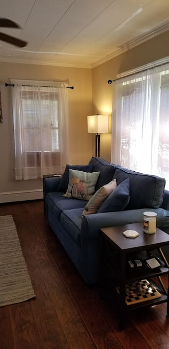 Living room pullout love seat