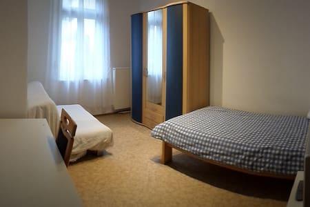 EZ Zimmer Landau/Pfalz Zentrum  1 P - Landau - Lägenhet