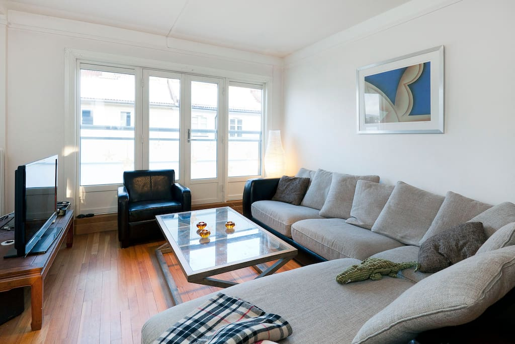 Living room, comfortable sofa, tv with Netflix and cable tv.