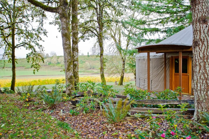 Yurt Glamping on Historic Oregon Vineyard