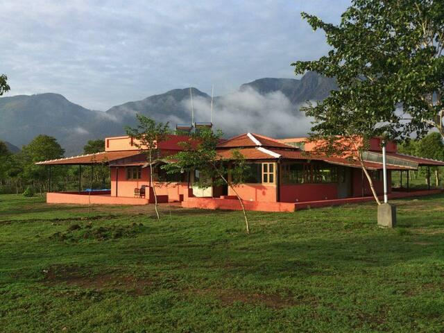 Bungalow Room 4 - Masinagudi - Bed & Breakfast