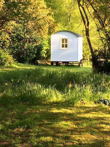 Blue Mountain Hut, Stylish Glamping - Borris - Hut