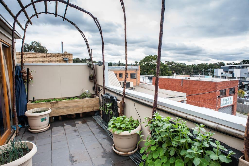 Garden balcony overlooking downtown Rosanna