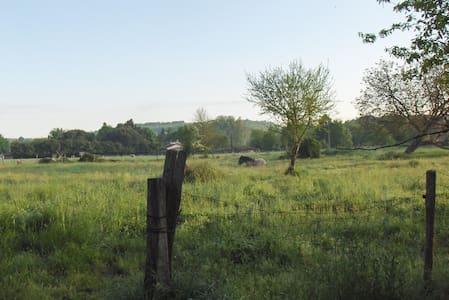 Hobbit house on a community farm - Chenaud