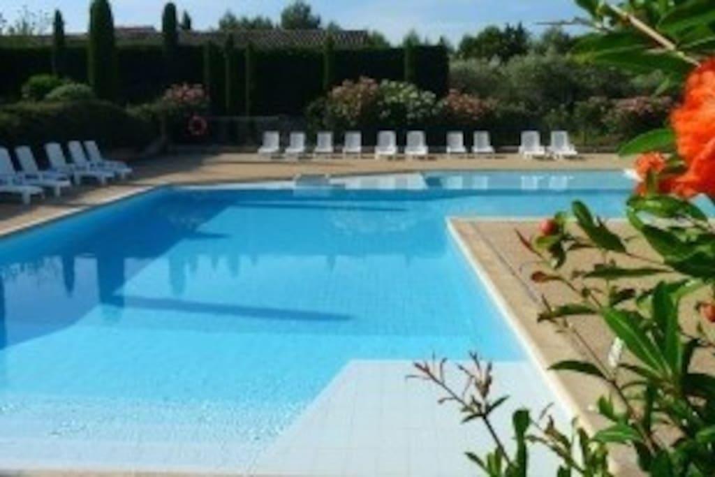 Grande piscine sécurisé