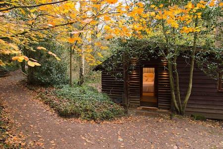Pinetum Log Cabin - Churcham - Cabin
