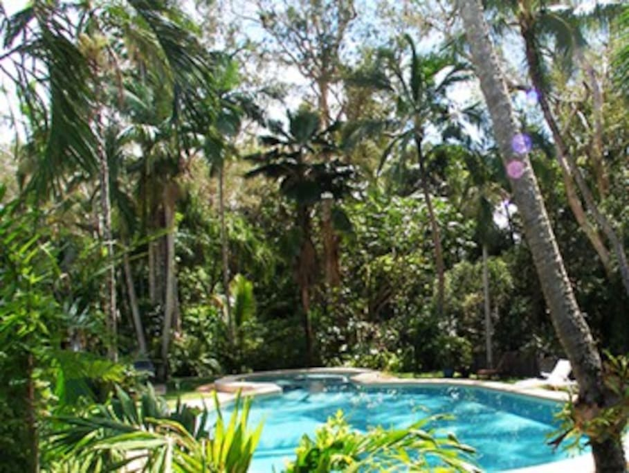 Amazing 18m lagoon pool surounded by lush gardens