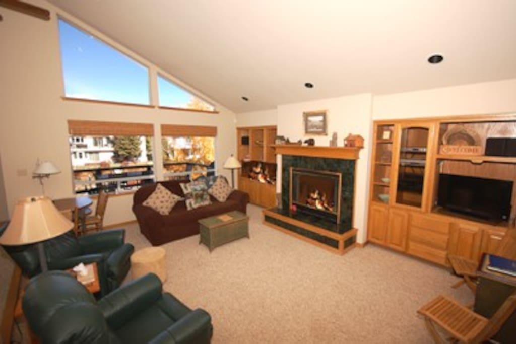 Lots of windows, fireplace - enjoy!