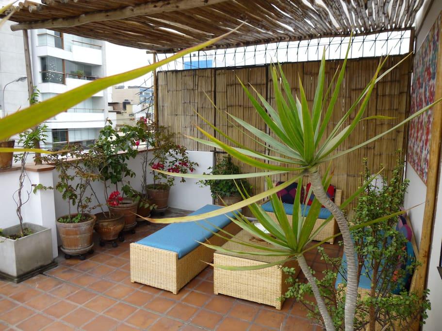 Terrace / Terraza