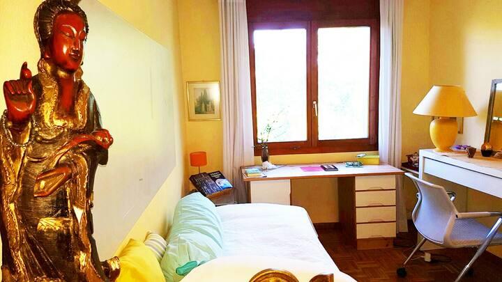 Zimmer (spring) in Dornach nahe Goetheanum