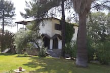 Villa Diana near Kalogria and Spathes beaches