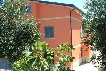 Villa Daniela 2° piano - Casal Velino