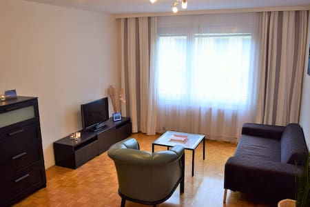 Spacious & conveniently located apartment - Viyana