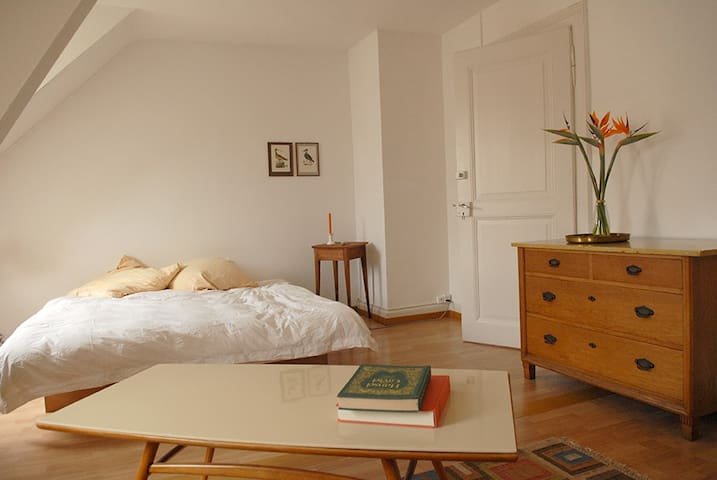 Pension Zollstübli for Basel World - Basilea - Bed & Breakfast