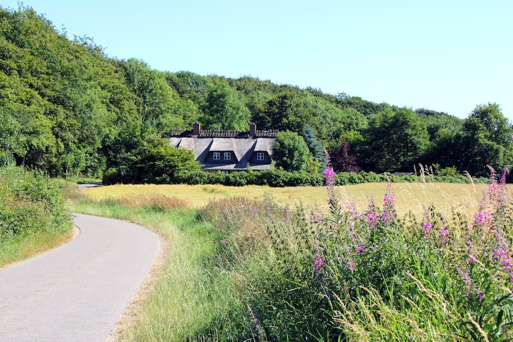 Das Haus liegt am Wald mit freiem Blick über die Felder