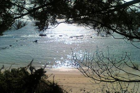 Tranquilidad  y vistas (illas Cies) - Cangas do Morrazo