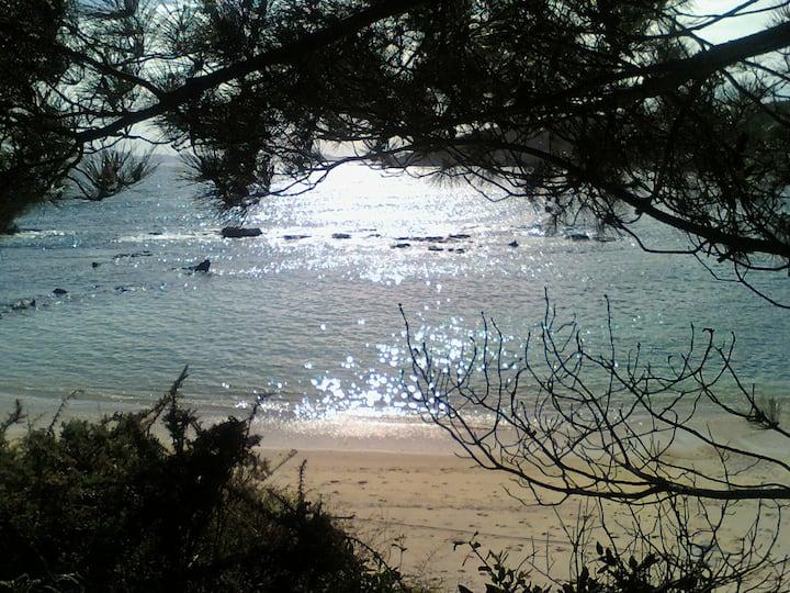 Tranquilidad  y vistas (illas Cies)