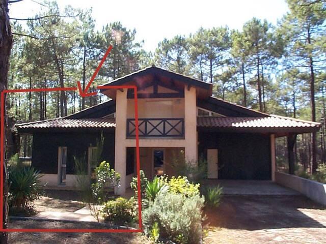Agréable villa dans les pins-30SY