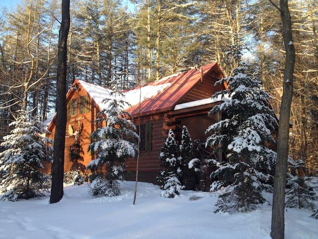 Escape the wintery chill!