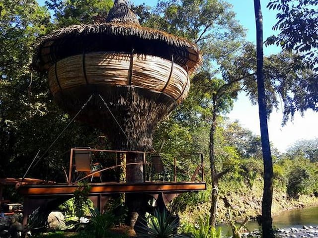 Tree-house Experience on a river - Puumaja