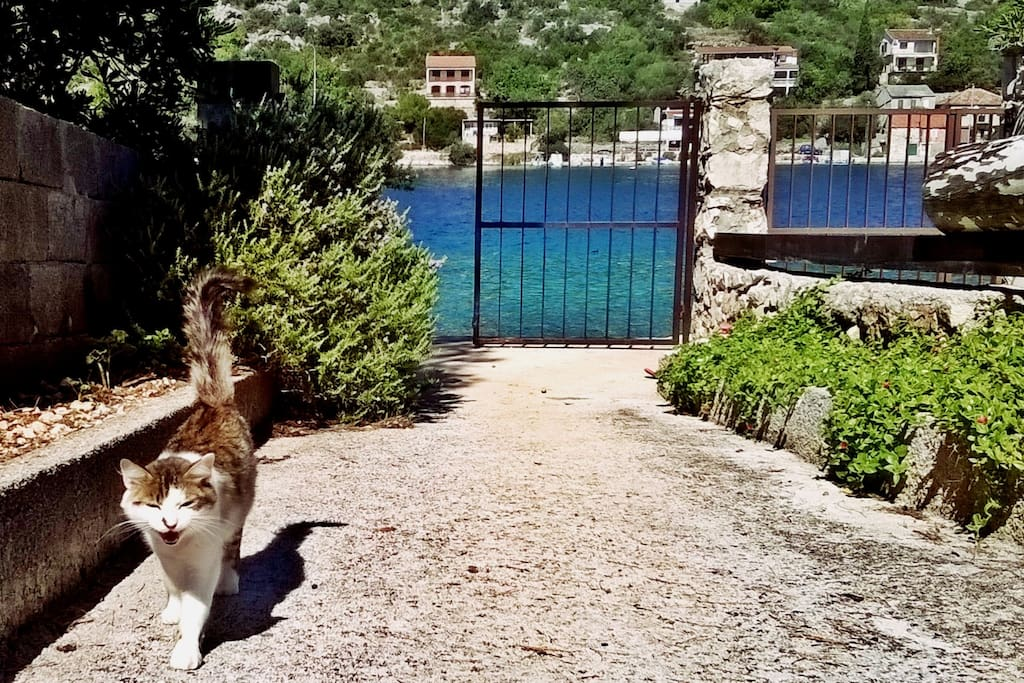 Entrance to the property, just few steps from the beach