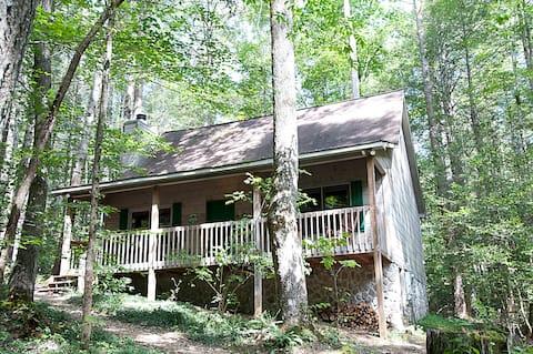 Cozy Mountain Cabin, Clean! Wifi!  = Evergreen!!
