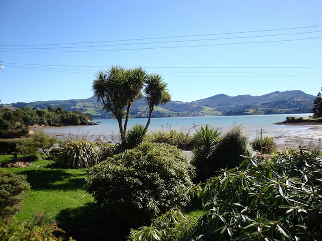 Albatrosses and Penguins/sea views - Dunedin - Apartment
