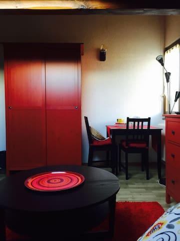 Charmante chambre dans villa  - Vernier - Huis